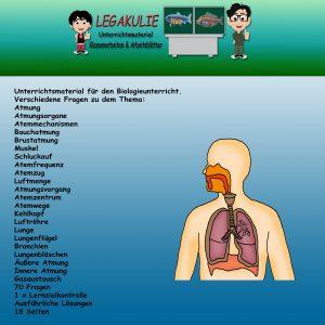 Atmung Biologie Schulprobe Klassenarbeit