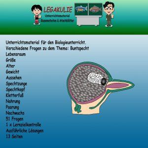 Buntspecht Biologie Arbeitsblatt Übungen Schulprobe