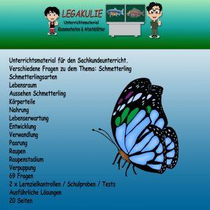 HSU Schmetterling 3.Klasse Aufgaben Übungen PDF