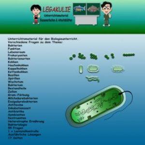 Bakterien Biologie Arbeitsblätter Schulaufgabe PDF