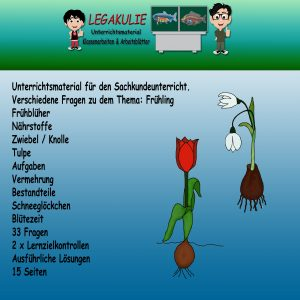 HSU Frühling 2.Klasse Klassenarbeit Übungsblätter PDF