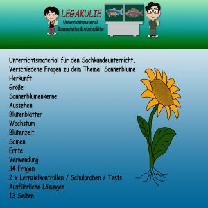 HSU Sonnenblume 3.Klasse Arbeitsblätter Übungen